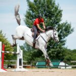 whitehorsejumping